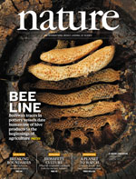 couv-nature-abeilles-12-11-2015.jpg