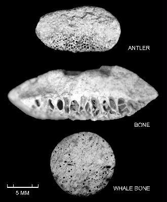 3 matières osseuses utilisées pour la fabrication des pointes